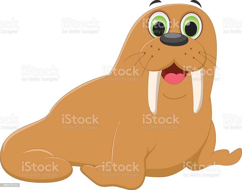 royalty free walrus tusk clip art vector images illustrations rh istockphoto com Whale Clip Art walrus face clip art