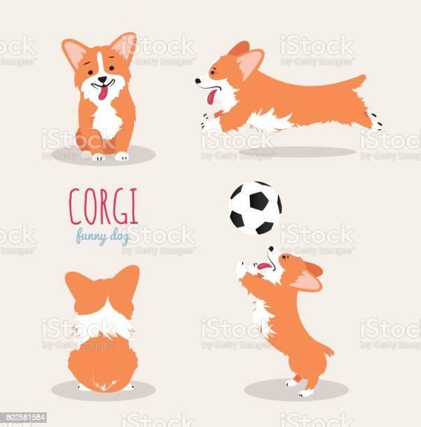 Cute welsh corgi pembroke cartoon set vector id802581584?b=1&k=6&m=802581584&s=612x612&h=wzce5stul3s opszstp9x9cclfxre3xwjvrtts4b1og=