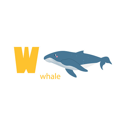 Cute whale card. Alphabet with animals. Colorful design for teaching children the alphabet, learning English. Vector illustration in a flat cartoon style on a white background