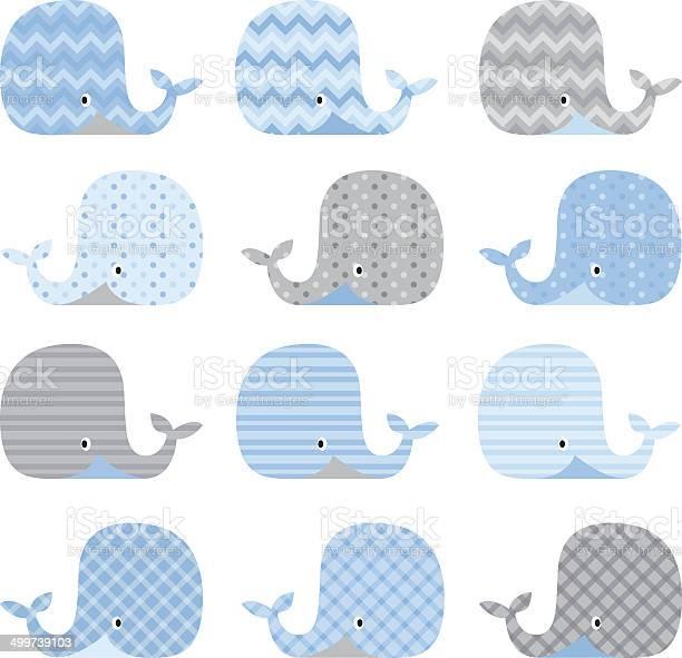 Cute whale pattern set illustration vector id499739103?b=1&k=6&m=499739103&s=612x612&h=sg0pgcn3nta vldl2eaqhfwnccxwjbc97uzarhmebfe=
