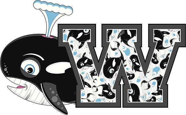 Royalty Free Cute Killer Whale Learning Letter W Clip Art Vector