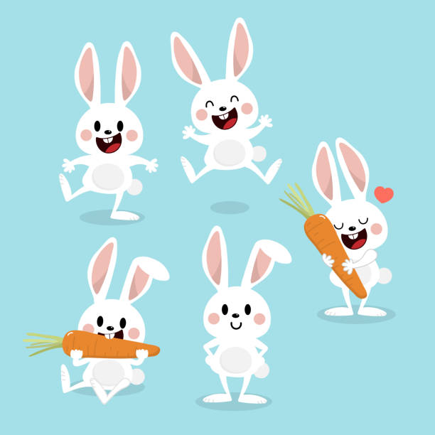 Cute white bunny with carrot. Rabbit cartoon vector collection. Animal wildlife character set. Cute white bunny with carrot. Rabbit cartoon vector collection. Animal wildlife character set. rabbit animal stock illustrations