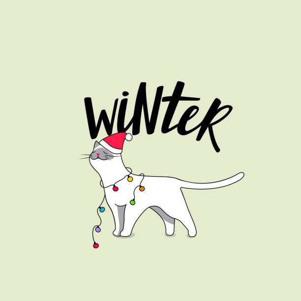 Cute White Cat with Winter Accessories Cute White Cat with Winter Accessories. Vector Cartoon Character with Garland and Santa Hat and Handwritten Lettering. Doodle Concept for Cards and Greetings. animal shelter stock illustrations