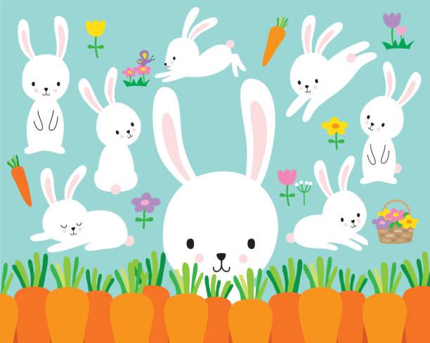 süße weiße osterhase vektor-illustration - kaninchen stock-grafiken, -clipart, -cartoons und -symbole