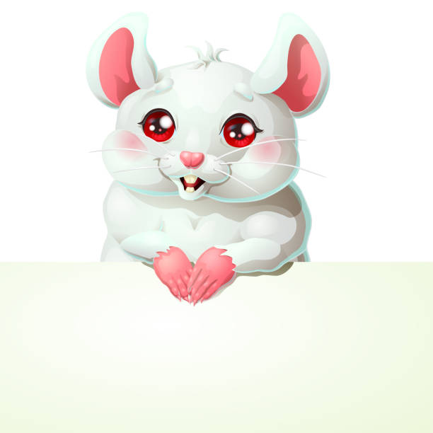 Bекторная иллюстрация Cute white mouse and banner on white