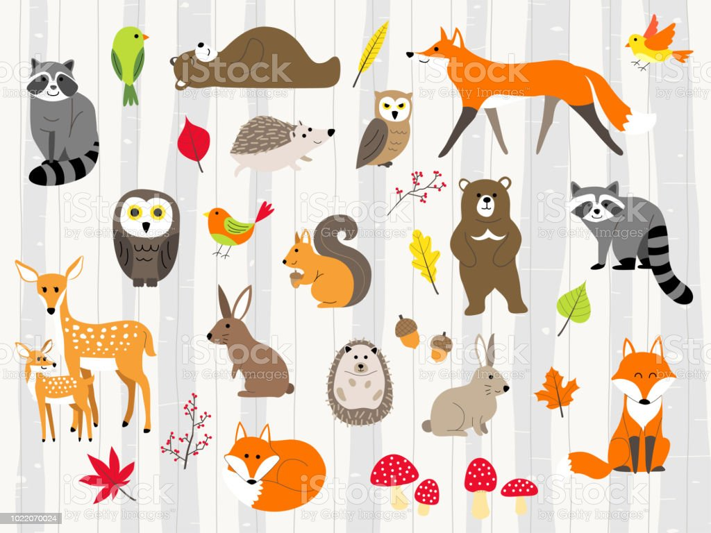 cute wild animals cartoon set royalty-free cute wild animals cartoon set stock illustration - download image now