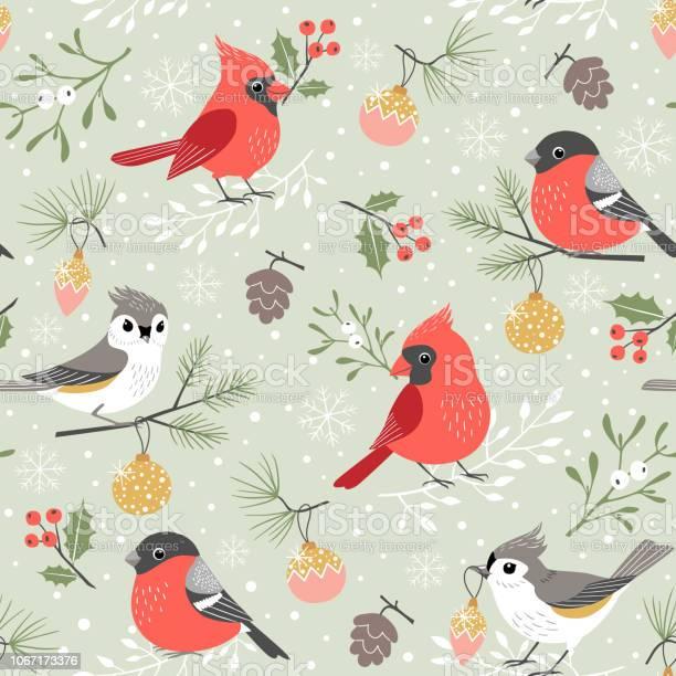 Cute winter bird christmas pattern vector id1067173376?b=1&k=6&m=1067173376&s=612x612&h=5ugktqz2acc nk1k098mmt6fipkjl9esqplyfmpv8te=