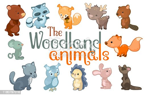 Cute woodland animals. Animal character set of vector illustrations on white background. Colorful wild animal sticker. Children or nursery logo. Baby zoo icon. Forest nature or friendly zoo clipart