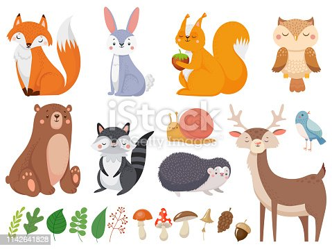 Cute woodland animals. Wild animal, forest flora and fauna elements. Fox, deer and hedgehog character or mushroom and leaves. Isolated cartoon vector illustration icons set