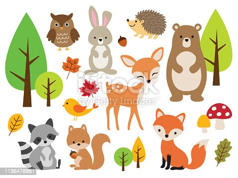 Vector illustration of cute woodland forest animals including deer, rabbit, hedgehog, bear, fox, raccoon, bird, owl, and squirrel.