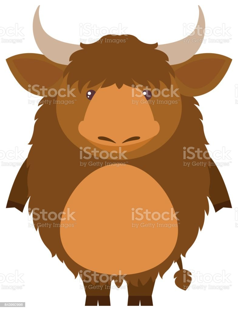 royalty free yak clip art vector images illustrations istock rh istockphoto com yak clipart free cute yak clipart