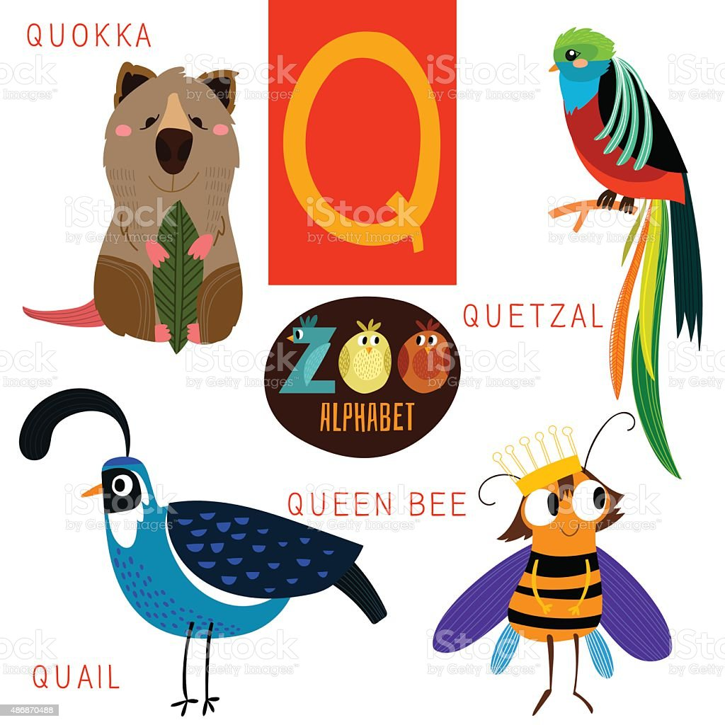 animals that start with the letter q zoo alphabet in vectorq letter animals 20191