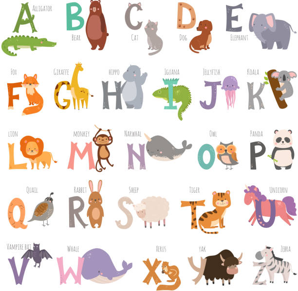 cute zoo-alphabet mit cartoon tiere isoliert auf weißem hintergrund und grunge buchstaben tierwelt lernen typografie niedliche sprache vektor-illustration - englischlernende stock-grafiken, -clipart, -cartoons und -symbole