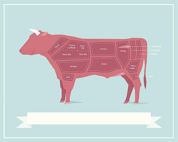rindfleisch - rindfleisch stock-grafiken, -clipart, -cartoons und -symbole