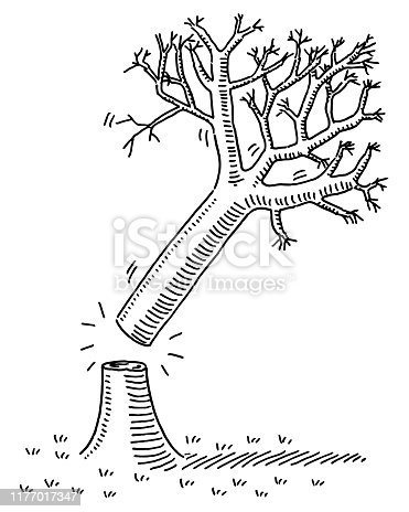 Hand-drawn vector drawing of Cutting Down A Tree. Black-and-White sketch on a transparent background (.eps-file). Included files are EPS (v10) and Hi-Res JPG.