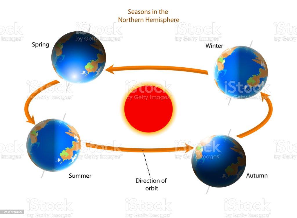 Cycle of seasons vector art illustration