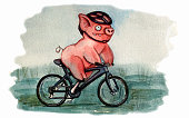 Funny pig riding a bicycle