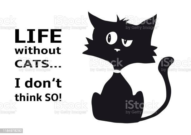 Cynical cat with quote life without cats i dont think so funny animal vector id1184978292?b=1&k=6&m=1184978292&s=612x612&h=8sodstkxqk9m7cgp9yya0v8mchf mtfkvbkpe9k wzs=
