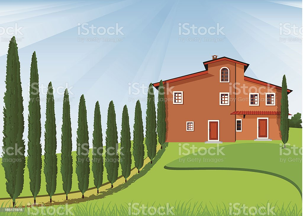 Cypress And House royalty-free stock vector art