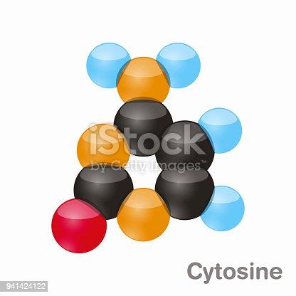 istock Cytosine, C. Pyrimidine nucleobase molecule. Base present in DNA. 3D vector illustration on white background 941424122