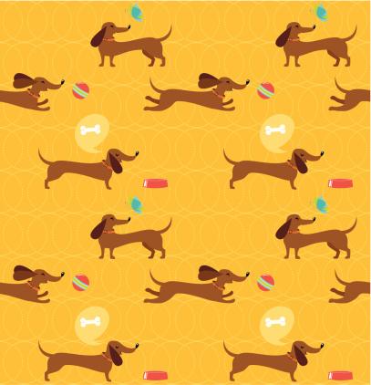 Dachshund dog seamless pattern