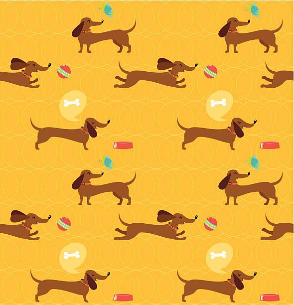 bildbanksillustrationer, clip art samt tecknat material och ikoner med dachshund dog seamless pattern - tax