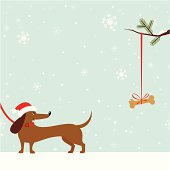 Happy Dachshund dog in Santa Hat looking at bone hanging on Christmas tree. Seamless snowflake background with copy space.