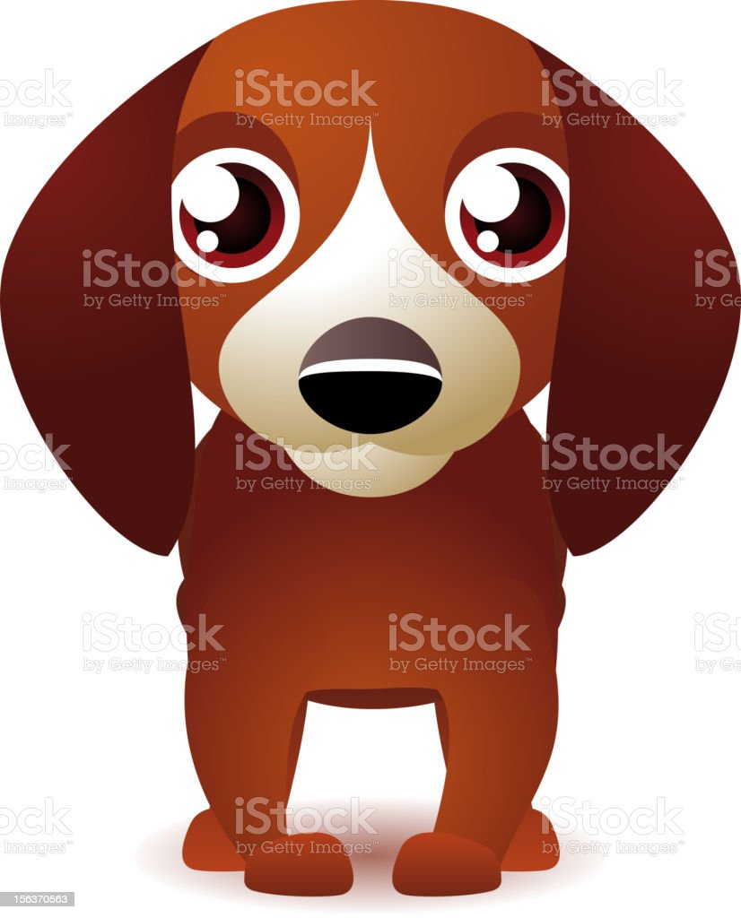 Dachshund Puppy Canine Kennel Dog Doggy Pet Front view royalty-free stock vector art