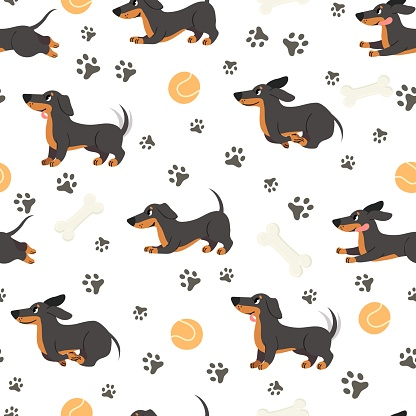 Dachshund seamless pattern. Adorable pets, funny dog long bodied breed, print for wrapping paper, textiles, wallpaper trendy vector texture