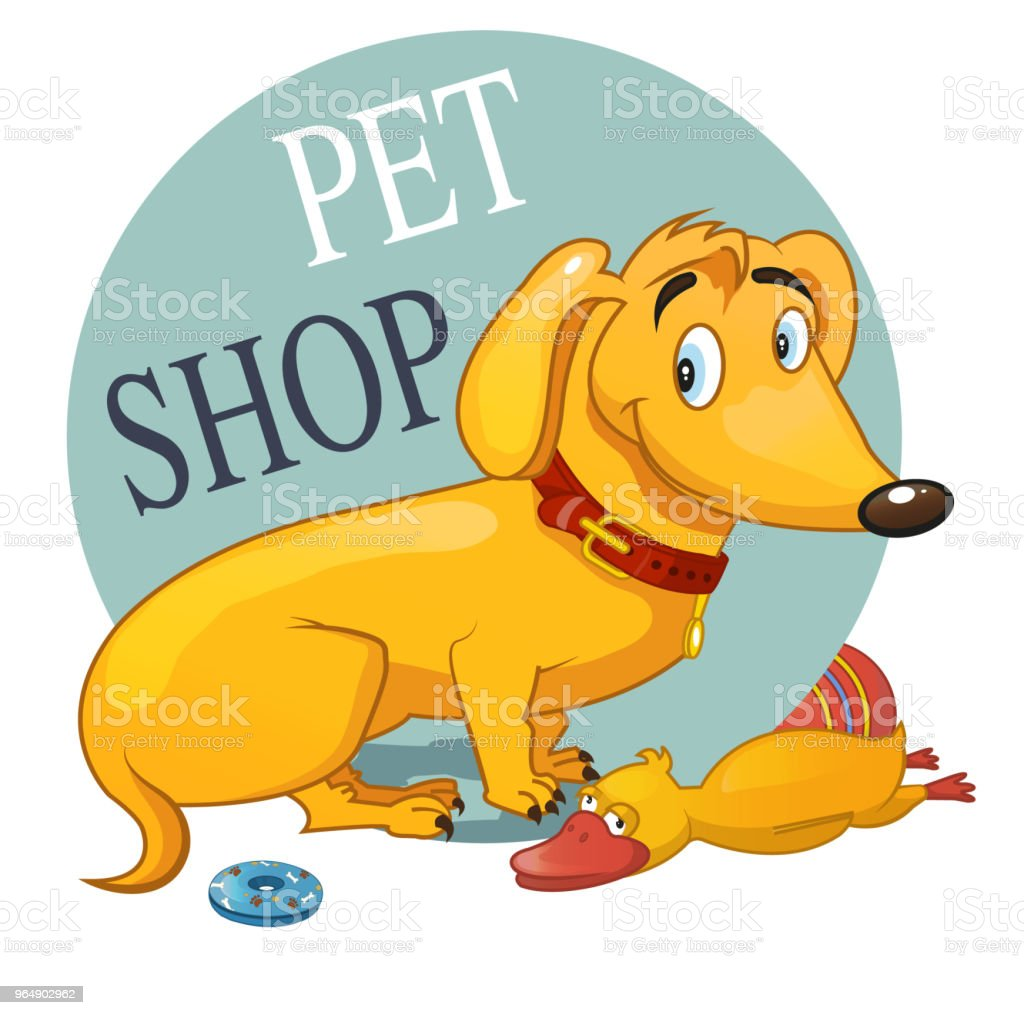 dachshund royalty-free dachshund stock vector art & more images of animal