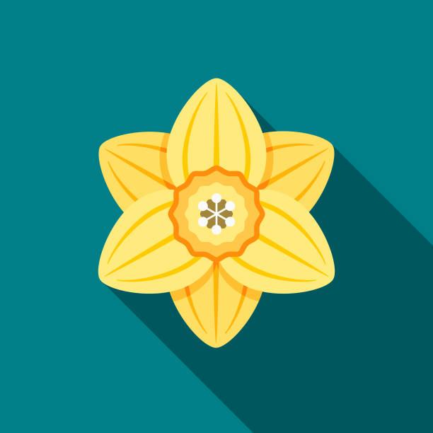 stockillustraties, clipart, cartoons en iconen met narcissen platte ontwerp springtime pictogram - fresh start yellow