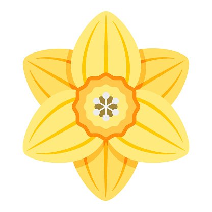 Daffodil Icon on Transparent Background