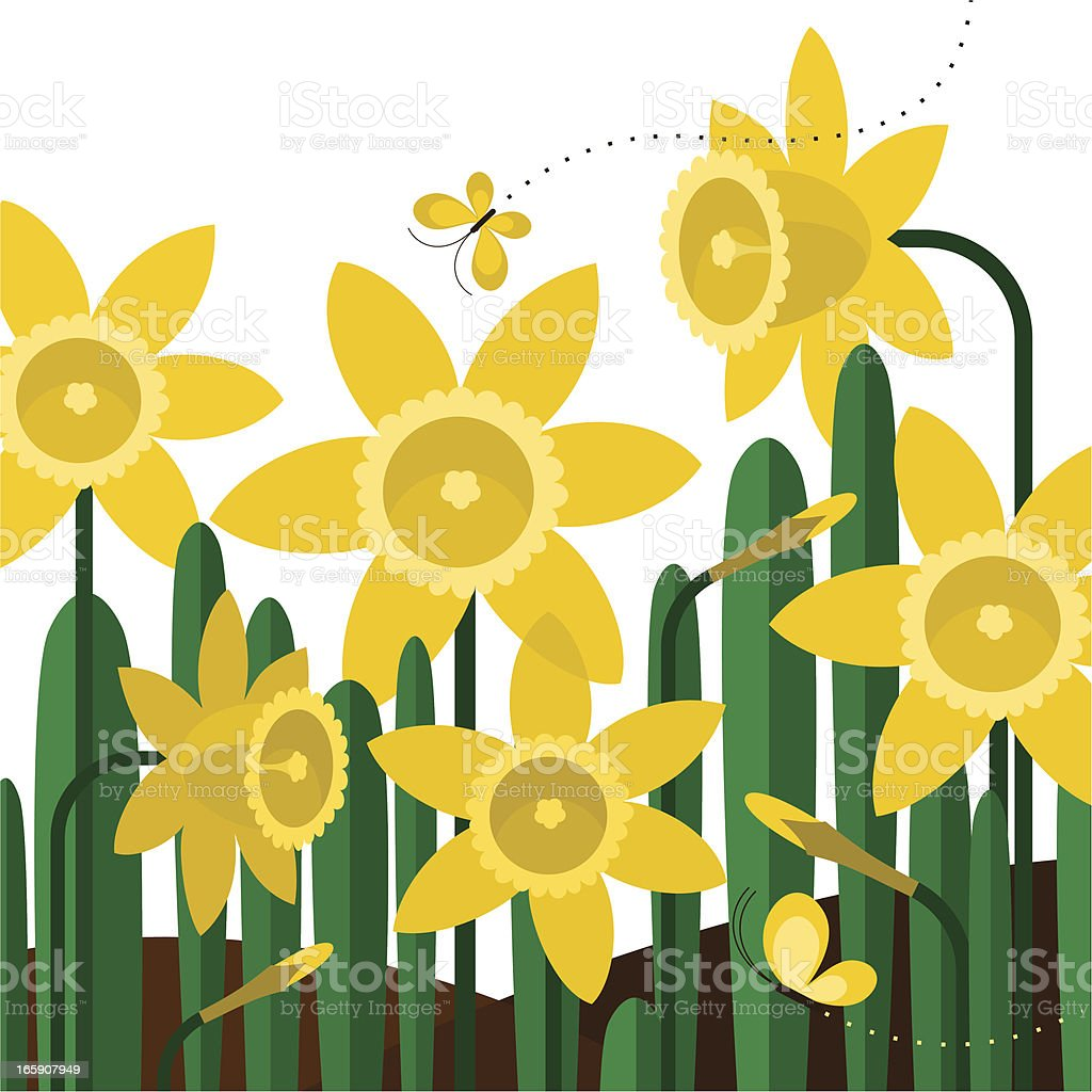Daffodils butterflies spring flower yellow garden illustration vector vector art illustration