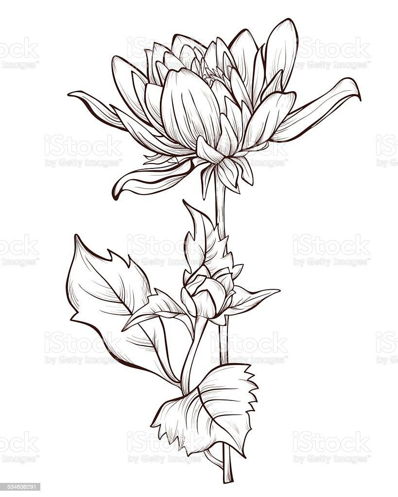 Dahlia Flower Tattoo Drawing 7716777 Sciencemadesimplefo