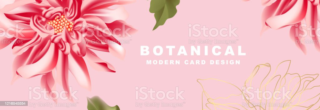 Dahlia In Red Pink Flower Bloom Wide Banner Background Wedding Template Floral Website Header Realistic Nature Frame With Typography Vector Stock Illustration Download Image Now Istock