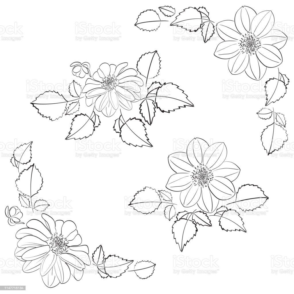 Ilustración De Dalias Flores Con Hojas Como Decoraciones