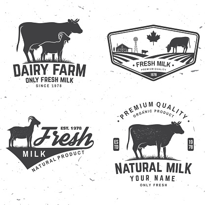 Dairy farm. Only fresh milk badge, logo. Vector. Typography design with cow , goat silhouette. Template for dairy and milk farm business - shop, market, packaging and menu