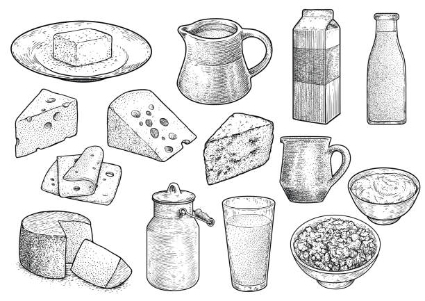illustrazioni stock, clip art, cartoni animati e icone di tendenza di dairy product illustration, drawing, engraving, ink, line art, vector - formaggio