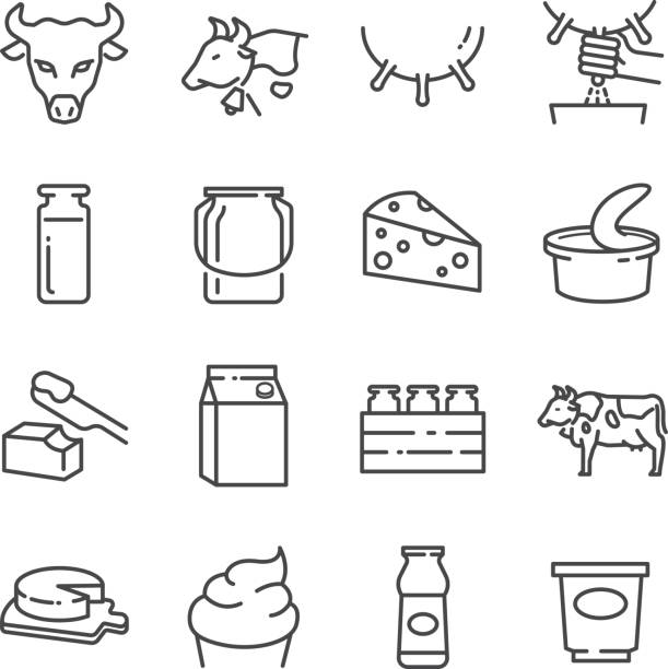 illustrazioni stock, clip art, cartoni animati e icone di tendenza di dairy products line icons set - formaggio