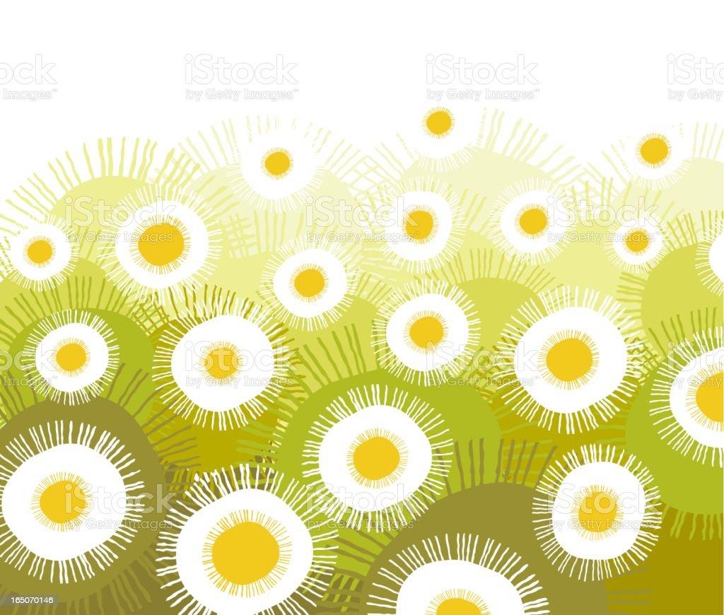 Daisies explosion royalty-free stock vector art