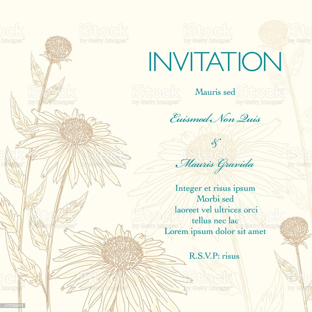 Daisies Floral Wedding Invitation Background vector art illustration