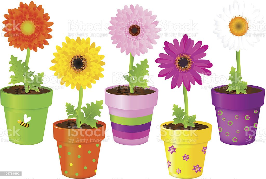 Daisies In Pots With Pictures vector art illustration