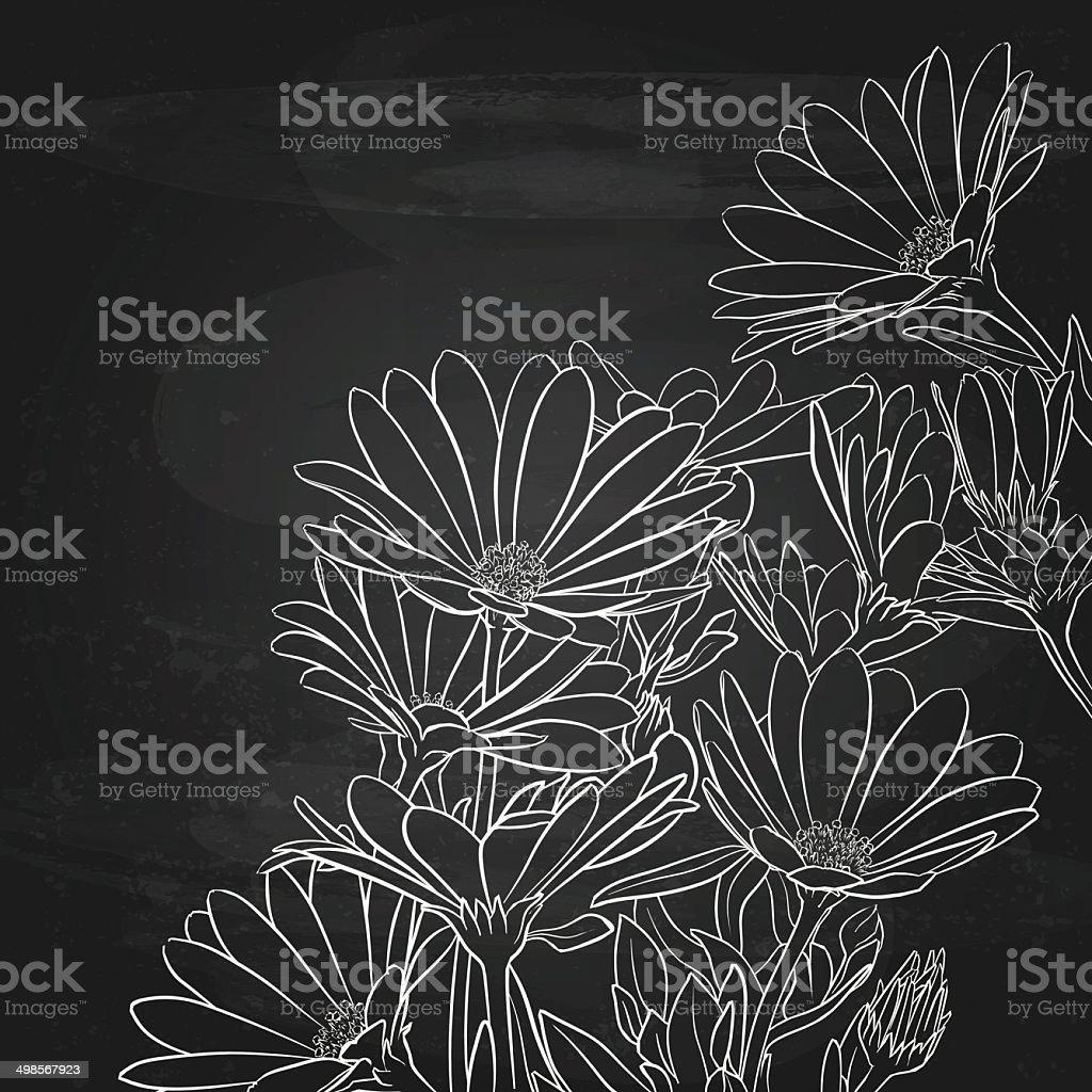 Daisies Over Chalkboard Background, Floral Background vector art illustration
