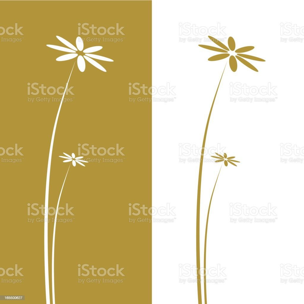 Daisies royalty-free daisies stock vector art & more images of abstract