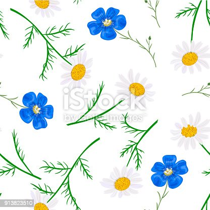istock Daisy and forget-me-not. seamless pattern Vector flowers set. floral collection 913823510