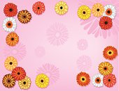 Part of a series on flower backgrounds.  A collection of daisies.  Each flower is grouped individually and separate from the background.