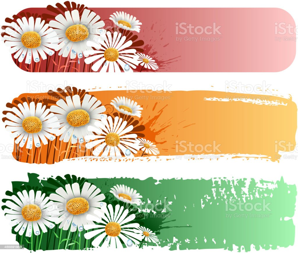 daisy banner royalty-free daisy banner stock vector art & more images of abstract