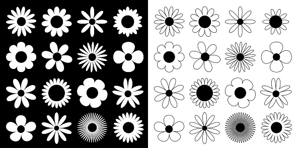 Daisy chamomile silhouette icon. Camomile super big set. Cute round flower head plant collection. Love card symbol. Growing concept. Flat design. Black White background. Isolated. Vector illustration