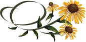 Calligraphy style Daisy Design Element.