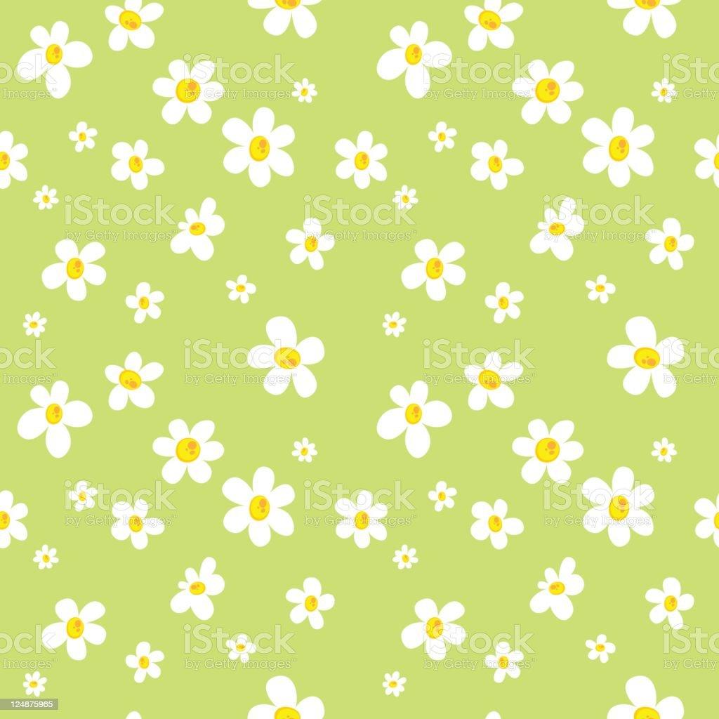 Daisy Field Pattern Background vector art illustration